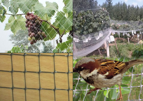 Stretched Plastic Mesh for Bird Control
